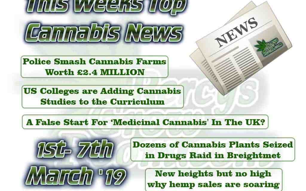 This weeks top cannabis news, 1st - 7th MArch 2019, Cannabis growers forum & community, How to grow cannabis, how to grow weed, a step by step guide to growing weed, cannabis growers forum, need help with sick plant, what's wrong with my cannabis plant, percys Grow Room, the Grow Room, percys Grow Guides, we'd growing forum, weed growers community, how to grow weed in coco, when is my cannabis plant ready for harvest, how to feed my cannabis plant, beginners guide to growing weed, how to grow weed for personal use, cannabis plant deficiency, how to germinate cannabis seeds, where to buy cannabis seeds, best weed growers website, cops smash cannabis farm worth 2.4 million, us colleges add cannabis to the curriculum, Hep sales are taking off,