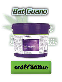 Bat guano for growing cannabis, increase cannabis flavour, how to make tasty weed, Cannabis growers forum & community, How to grow cannabis, how to grow weed, a step by step guide to growing weed, cannabis growers forum, need help with sick plant, what's wrong with my cannabis plant, percy's Grow Room, the Grow Room, Cannabis Grow Guides, weed growing forum, weed growers community, how to grow weed in coco, when is my cannabis plant ready for harvest, how to feed my cannabis plant, beginners guide to growing weed, how to grow weed for personal use, cannabis plant deficiency, how to germinate cannabis seeds, where to buy cannabis seeds, best weed growers website, Learn to grow cannabis, is it easy to grow weed