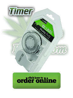 timer for cannabis plant lights, light cycles, Cannabis growers forum & community, How to grow cannabis, how to grow weed, a step by step guide to growing weed, cannabis growers forum, need help with sick plant, what's wrong with my cannabis plant, percy's Grow Room, the Grow Room, Cannabis Grow Guides, weed growing forum, weed growers community, how to grow weed in coco, when is my cannabis plant ready for harvest, how to feed my cannabis plant, beginners guide to growing weed, how to grow weed for personal use, cannabis plant deficiency, how to germinate cannabis seeds, where to buy cannabis seeds, best weed growers website, Learn to grow cannabis, is it easy to grow weed, How to grow cannabis, how to grow weed, a step by step guide to growing weed, cannabis growers forum, need help with sick plant, what's wrong with my cannabis plant, percys Grow Room, the Grow Room, percys Grow Guides, we'd growing forum, weed growers community, how to grow weed in coco, when is my cannabis plant ready for harvest, how to feed my cannabis plant, beginners guide to growing weed, how to grow weed for personal use, cannabis plant deficiency, how to germinate cannabis seeds, where to buy cannabis seeds, best weed growers website, Cannabis Growers forum, weed growers forum, How to grow legal cannabis, a step by step guide to growing weed, cannabis growing guide, tips for marijuana growers, growing cannabis plants for the first time, marijuana growers forum, marijuana growing tips, cannabis plant problems, cannabis plant help, marijuana growing expert advice