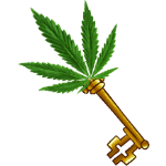 Bronze key, free cannabis seeds, Percy points and bling, Cannabis growers forum & community, How to grow cannabis, how to grow weed, a step by step guide to growing weed, cannabis growers forum, need help with sick plant, what's wrong with my cannabis plant, percys Grow Room, the Grow Room, percys Grow Guides, we'd growing forum, weed growers community, how to grow weed in coco, when is my cannabis plant ready for harvest, how to feed my cannabis plant, beginners guide to growing weed, how to grow weed for personal use, cannabis plant deficiency, how to germinate cannabis seeds, where to buy cannabis seeds, best weed growers website