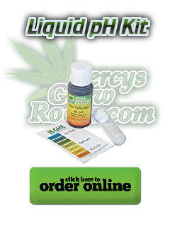 ph testing kit for growing cannabis, lliquid ph tester, beginners guide to growing weed, how to grow weed for personal use, cannabis plant deficiency, how to germinate cannabis seeds, where to buy cannabis seeds, best weed growers website, Cannabis Growers forum, weed growers forum, How to grow legal cannabis, a step by step guide to growing weed, cannabis growing guide, tips for marijuana growers, growing cannabis plants for the first time, marijuana growers forum, marijuana growing tips, cannabis plant problems, cannabis plant help, marijuana growing expert advice