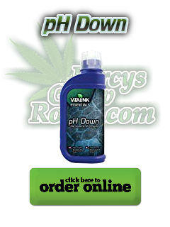 ph down, PH measurement, water resistant, shock and drop proof, auomatic shut off, lifespan of three years, Cannabis growers forum & community, How to grow cannabis, how to grow weed, a step by step guide to growing weed, cannabis growers forum, need help with sick plant, what's wrong with my cannabis plant, percys Grow Room, the Grow Room, percys Grow Guides, we'd growing forum, weed growers community, how to grow weed in coco, when is my cannabis plant ready for harvest, how to feed my cannabis plant, beginners guide to growing weed, how to grow weed for personal use, cannabis plant deficiency, how to germinate cannabis seeds, where to buy cannabis seeds, best weed growers website, how to dry cannabis