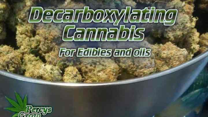 Decarboxylating cannabis, how to decarb cannabis, decarbing cannabis, what is decarbing cannabis beginners guide to growing weed, how to grow weed for personal use, cannabis plant deficiency, how to germinate cannabis seeds, where to buy cannabis seeds, best weed growers website, Cannabis Growers forum, weed growers forum, How to grow legal cannabis, a step by step guide to growing weed, cannabis growing guide, tips for marijuana growers, growing cannabis plants for the first time, marijuana growers forum, marijuana growing tips, cannabis plant problems, cannabis plant help, marijuana growing expert advice