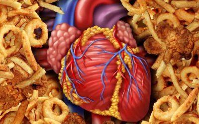 crise cardiaque et maladies cardio-vasculaires