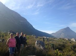 Rod's Trail, Betty's Bay, mountains, hiking, overberg, overberg hiking, adventure, travel, explore, fynbos, kogelberg