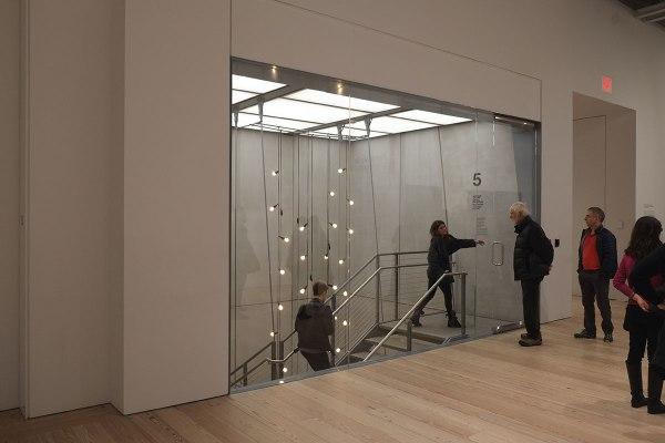 Whitney Museum Peregrine Nation