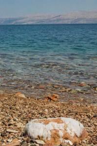 Sol morza martwego