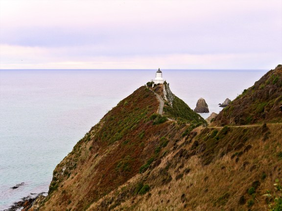 Nugget Point - The Catlins - New Zealand - © Claire Blumenfeld