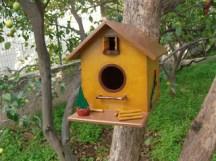 bird-house21