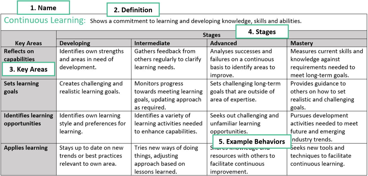 Competency Continuous Learning