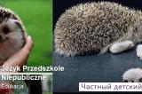 Жизнь в Польше — частный детский сад, взгляд изнутри