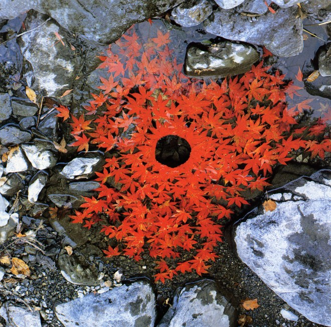 land-art-Andy-Goldsworthy-03