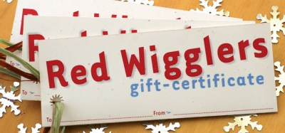 wonder-worman-certificate