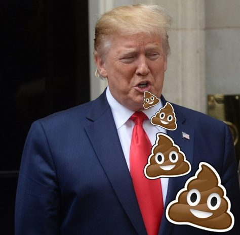Donald Trump Racist in Chief