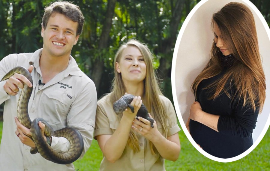 Bindi Irwin Exhibits Off Her Rising Child Bump In THE Most ...