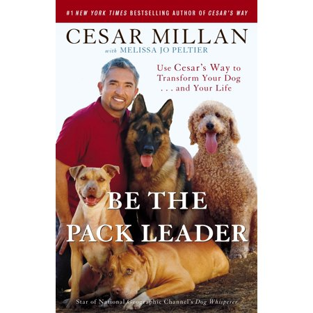 be the pack leader.jpeg