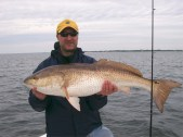 David's gigantic St. Joe Bay Bull Redfish