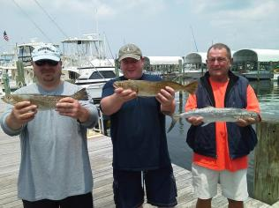 St Joe Bay Gator Trout and Spanish Mackerel