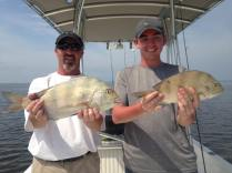 St Joe Bay Sheepshead