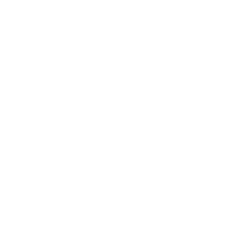 perfect codex