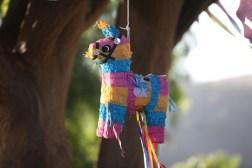 40 The Piñata