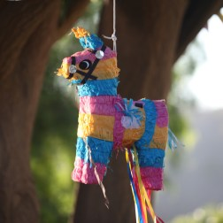 40 The Piñata