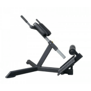 Forge Fitness 45 Degree Hyper Extension Bench