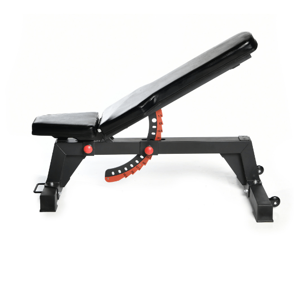 Elite Adjustable Bench