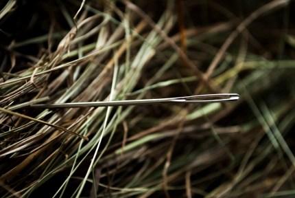 needle-1419606_1280