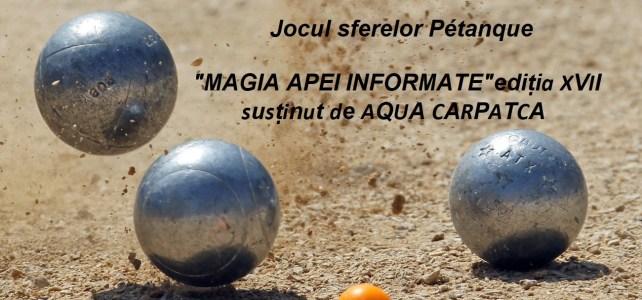 """MAGIA APEI INFORMATE""ediția XVII"