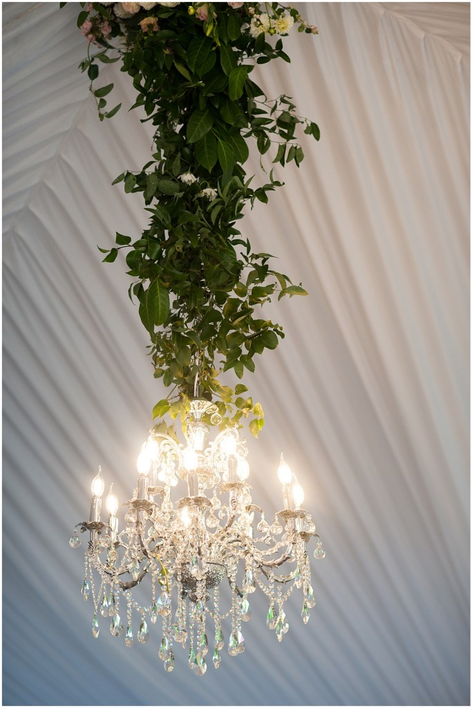 A large crystal chandelier hangs from a the ceiling of white tent with the chord covered in green vines, DeLille Cellars wedding, Woodinville winery, Washington wedding, Perfectly Posh Events wedding planning, Photo by Barbie Hull