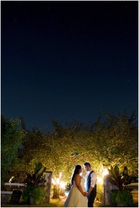 Bride and groom gaze into each other's eyes at twilight in front of two rows of lit up trees, DeLille Cellars wedding, Woodinville winery, Washington wedding, Perfectly Posh Events wedding planning, Photo by Barbie Hull