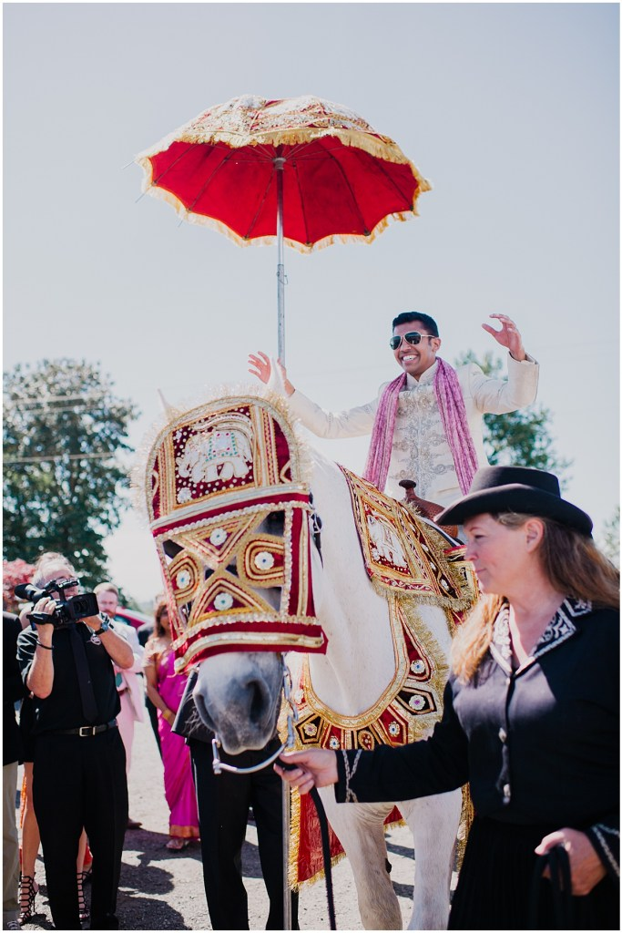 Groom rides into wedding on a white horse as wedding guests cheer him on, Dairyland wedding, Snohomish county wedding, Hindu wedding, wedding planning by Perfectly Posh Events, Photo by Barrie Anne Photography