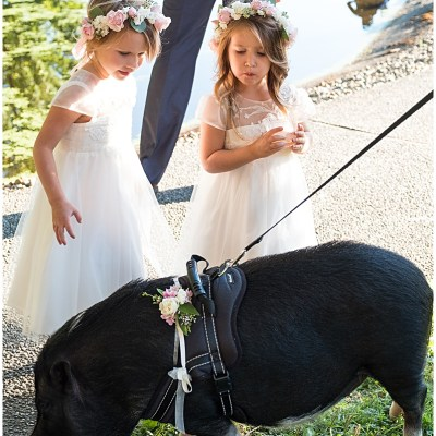 Flower Girls play with miniature pig at wedding cocktail hour   Whimsical and Romantic Wedding at DeLille Cellars   Wedding Planning & Design by Perfectly Posh Events   Wedding Photos by Barbie Hull Photography   Wedding Flowers by Floressence   #perfectlyposhevents