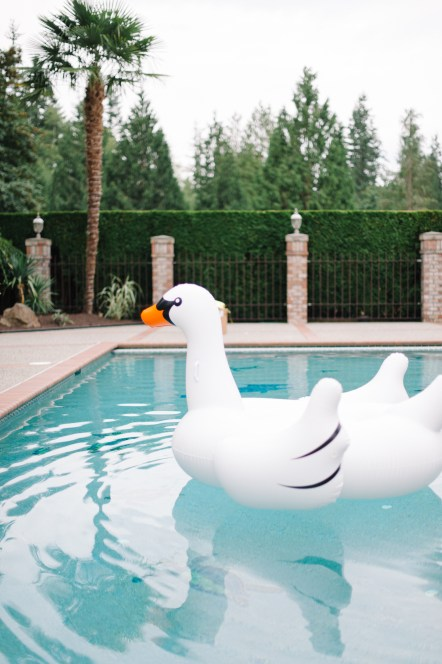 Swan in a pool at a wedding, Allison Dan Woodinville Wedding by Perfectly Posh Events, Photo by Blue Rose Photography