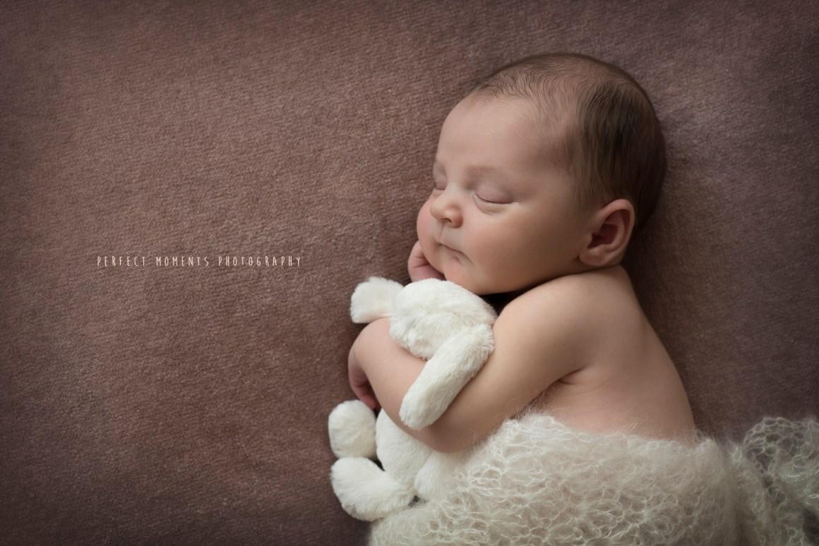 baby-sidney