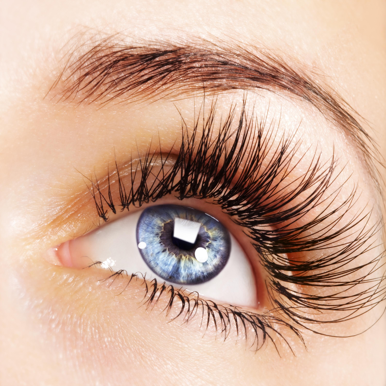 Ottawa Eyelash Extensions Prices 613 6273036