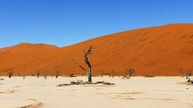 TerraVista, Spezialist für Namibiareisen: die Namib Wüste