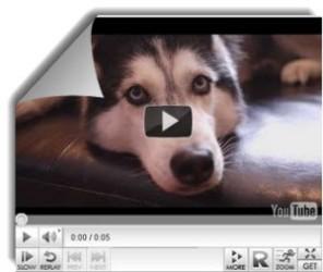 Embedplus, agregar más funciones a los videos de YouTube