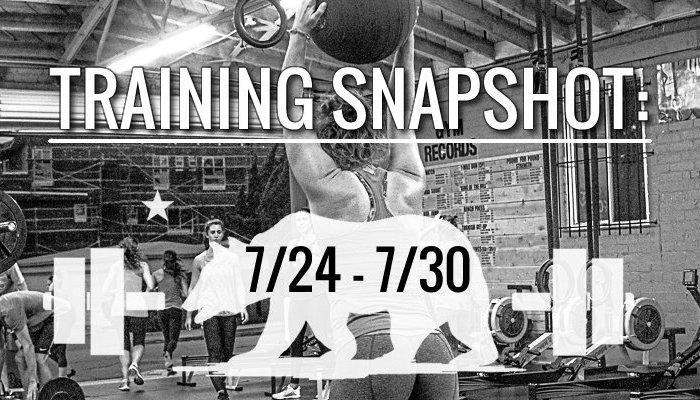 training_snapshot_7_24_17