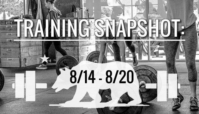 training_snapshot_8_14_17