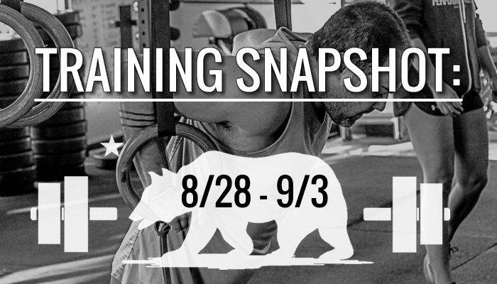 training_snapshot_8_28_17