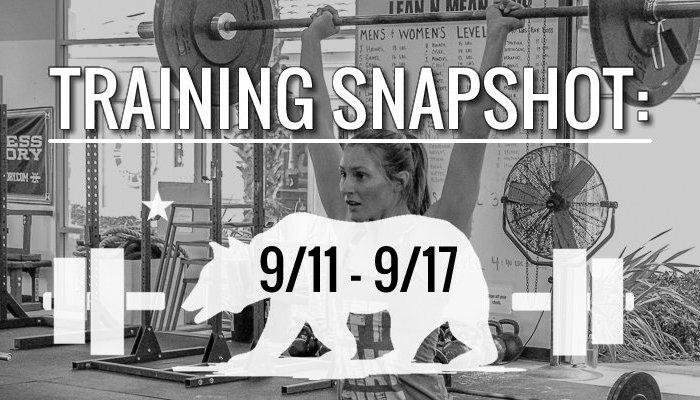 training_snapshot_9_11_17