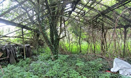 An abandonded greenhouse in Sipson