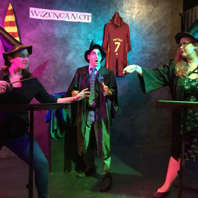 WIZENGAMOT Is a Treat for Potterheads of Any Age