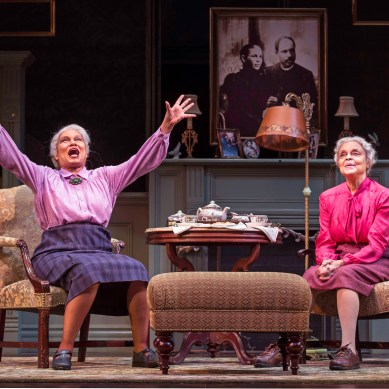 REVIEW: HAVING OUR SAY: THE DELANY SISTERS' FIRST 100 YEARS at Goodman Theatre
