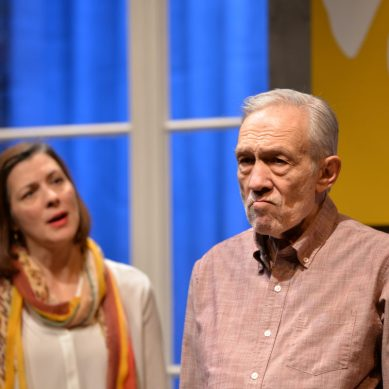 Review   THE FATHER at Remy Bumppo