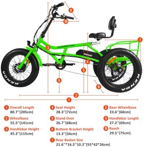 Electric Recumbent Tricycle