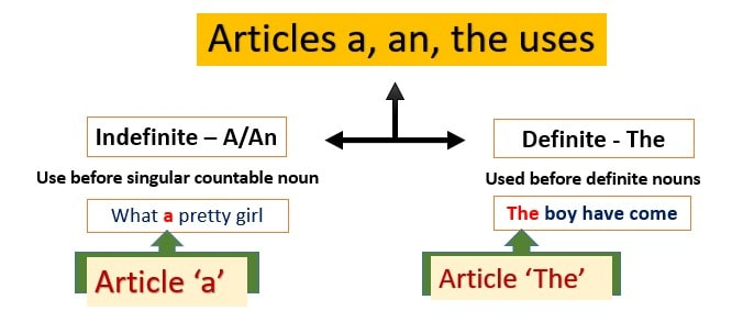 Articles a an the uses