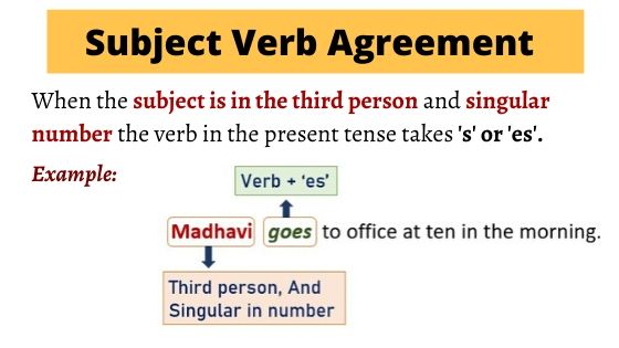 Subject verb Agreement Example